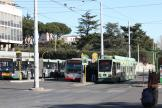 Rome low-floor articulated tram 9012 on tram line 19 at the stop Campo Verano (2009)