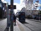Rostock low-floor articulated tram 689 on extra line 2 at the stop Neuer Markt (2015)